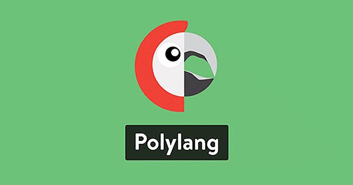 plugin polylang